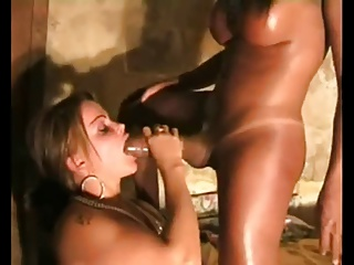 Two Busty Hung Ladys Suck Each Other Off